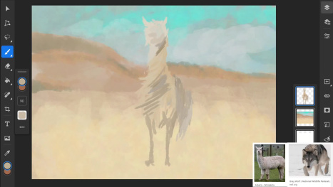 ~ Wednesday morning animal fusion on Photoshop for the iPad ~