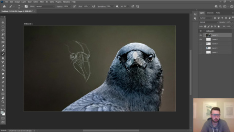 Chillin' With Gordon - Raven Study
