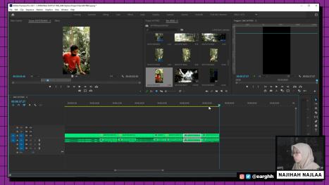 Edit A SKYTREX Vlog in Premiere Pro