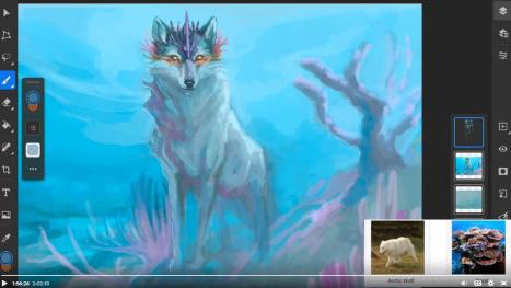 ~ Wednesday morning animal fusion ~
