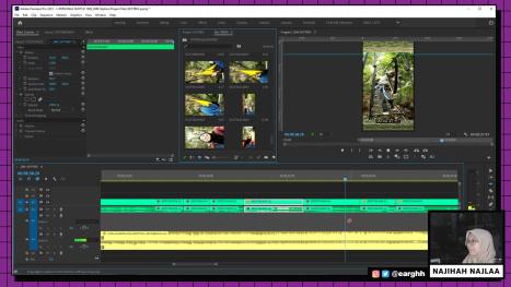 Edit A SKYTREX Vlog in Premiere Pro PART 3